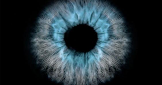 eye_563.jpg
