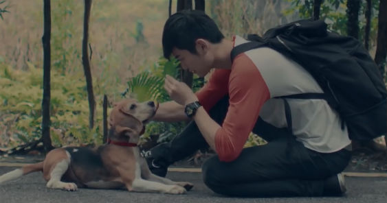aa_pawsperous_cny_video_scene-1_563.jpg